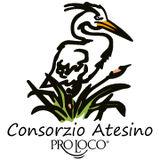 Profile for Consorzio Atesino delle Pro Loco