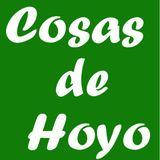Profile for CosasdeHoyo Hoyo de Manzanares