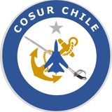 Profile for Cosur Chile