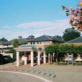 Profile for Cultural Arts Center
