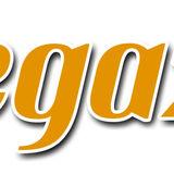 Profile for megazin