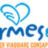 Profile for ERMES.NET