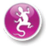 Profile for sitiwebegrafica.it