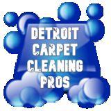 Detroit Carpet Cleaning Pros