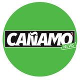 Cañamo News / Weeds Chile