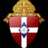Profile for Diocese of Winona-Rochester