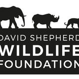 Profile for David Shepherd Wildlife Foundation