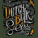 DutchBulk