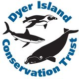 Profile for Dyer Island Conservation Trust