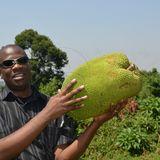 Profile for Eatbeta International Foundation