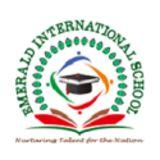 Profile for Emarald International School