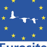 Profile for Eurosite