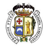 Profile for falla avinguda
