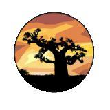 Profile for Fallou  ONGD