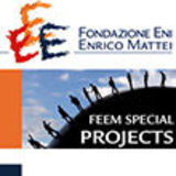 FEEM Special Project