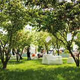Profile for Festival del Verde e del Paesaggio