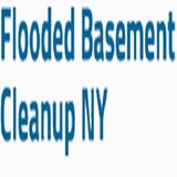 Profile for Flooded Basement Clean Up Long Island