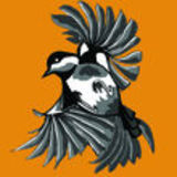 Profile for flyingchickadee