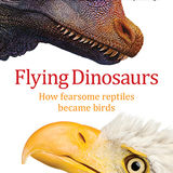 Profile for Flying Dinosaurs