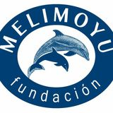 Profile for fundacion melimoyu