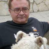 Profile for José L. Fresquet Febrer