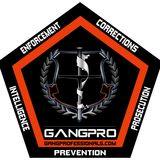 Profile for Gang Enforcement