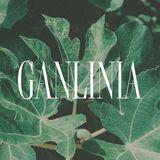 Profile for GANLINIA 甘里尼亞