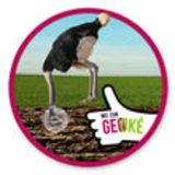 Profile for Geo- Impuls