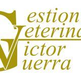 Profile for Gestion Veterinaria