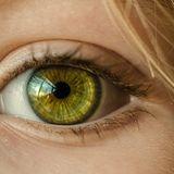 Profile for Göz Kapağı Estetiği