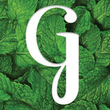 Profile for Greenbelt Magazine - It's a Boise Thing