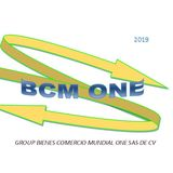 Profile for Group bcm-one