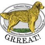 Profile for Southeastern Virginia Golden Retriever Education And Training, Inc