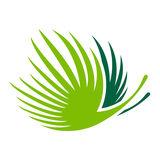 Profile for GrupoPuntacana