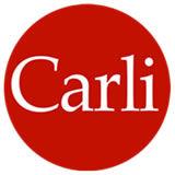 Profile for Gruppo Carli