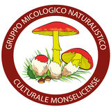 Profile for Gruppo Micologico Monselice