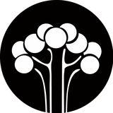 Guia da Mantiqueira - Itajubá e Região