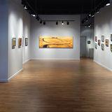 Profile for Harris Harvey Gallery
