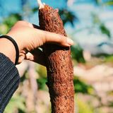 Profile for Henan-Doing cassava processing machine