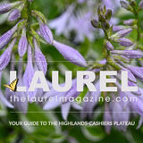 Profile for The Laurel Magazine of Highlands NC and Cashiers NC