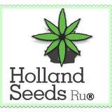 Profile for Holland SeedsRu