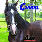 Horsemen's Corral