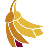 Profile for Hospice New Zealand