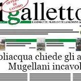 Profile for Il Galletto Giornale