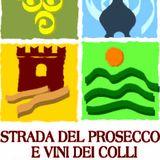 Profile for Strada del Prosecco e Vini dei Colli Conegliano Valdobbiadene