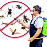 Profile for Insect Killer Services Pvt Ltd