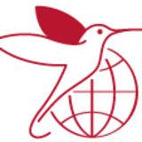 Profile for International Diabetes Federation