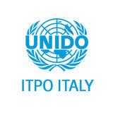 Profile for UNIDO ITPO Italy