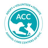 Profile for Animal Care Centers of NYC