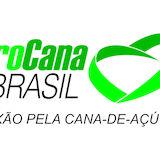 ProCana Brasil